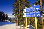 Stock photo of trail signs for the Ptarmigan and Lower Whiskey Jack ski trails on Whistler Mountain, Whistler Blackcomb, Whistler, British Columbia, Canada. This scene shows snow covered ground looking down the Ptarmigan ski trail, stands of tall evergree