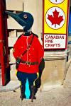 Stock photo of a penguin dressed like a Canadian Mountie in front of a souvenir store in Ottawa, Ontario, Canada.