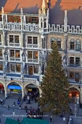 Christmas tree Marienplatz New City Hall City of Munich Bavaria