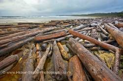 Driftwood Wickaninnish Beach Wickaninnish Bay Pacific Rim National Park British Columbia Canada