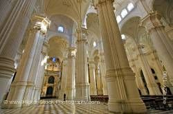 Columns and ceiling of Granada Cathedral City of Granada Province of Granada Andalusia Spain