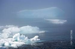 Iceberg Strait of Belle Isle Viking Trail Northern Peninsula Newfoundland Canada