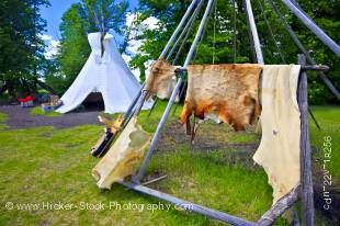 Stock photo of animal skins draped over a pole to dry in the sun at the Aboriginal Encampment, Lower Fort Garry - a National Historic Site, Selkirk, Manitoba, Canada.