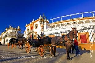Stock photo of horse drawn open carriages outside the Plaza de Toros de la Maestranza (Bullring) in the El Arenal district, City of Sevilla, Province of Sevilla, Andalusia, Spain, Europe.