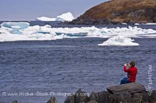Stock photo of a woman iceberg watching from the shore in the town of Quirpon with pack ice in the harbour, Trails to the Vikings, Viking Trail, Great Northern Peninsula, Northern Peninsula, Newfoundland, Canada. Model Released.