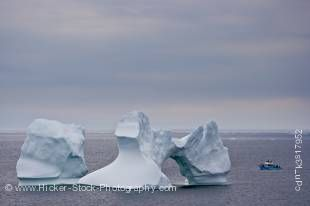 Stock photo of Iceberg watching tour with Northland Discovery Boat Tours from St Anthony seen from Flat Point Lookout in the town of Great Brehat overlooking Iceberg Alley in the Atlantic Ocean, Viking Trail, Trails to the Vikings, Great Northern Peninsul