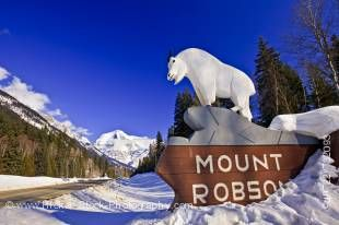 Stock photo of the mountain goat statue atop the sigh for Mount Robson Provincial park along Yellowhead Highway (16) with Mount Robson and a clear deep blue sky in the background in British Columbia, Canada.