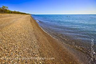 Stock photo of the shores and endless horizon of Lake Erie in Point Pelee National Park, Leamington, Ontario, Canada.