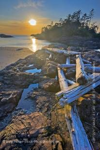 Stock photo of several large pieces of driftwood strewn over a rocky outcrop along South Beach at sunset in Pacific Rim National Park, Long Beach Unit, Clayoquot Sound UNESCO Biosphere Reserve, West Coast, Pacific Ocean, Vancouver Island, British Columbia