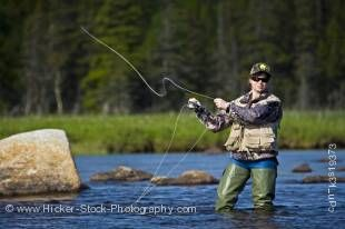 Stock photo of a woman fly fishing in Salmon River near the town of Main Brook, Viking Trail, Northern Peninsula, Great Northern Peninsula, Newfoundland. Model Released.