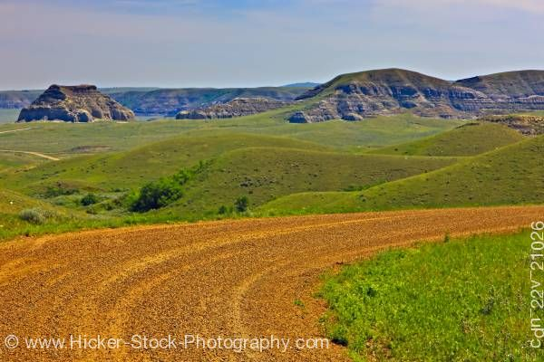 Stock photo of Road to Castle Butte in the Big Muddy Badlands of Southern Saskatchewan Canada