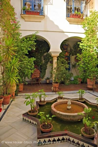 Stock photo of Courtyard plants old town district City of Cordoba Province of Cordoba Andalusia Spain Europe