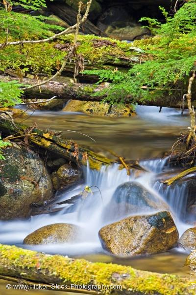 Stock photo of Creek Monashee Provincial Park British Columbia Canada