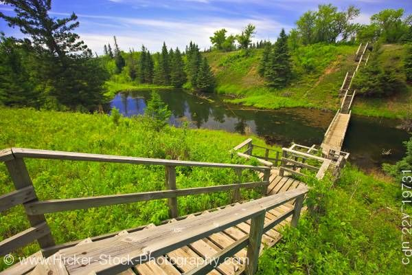Stock photo of Devils Punch Bowl wooden stairs Spirit Sands Spruce Woods Provincial Park Manitoba Canada