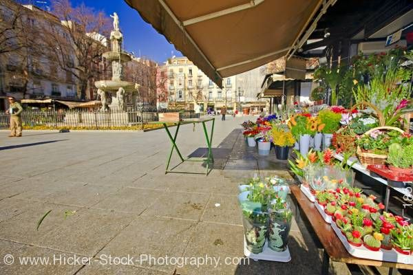 Stock photo of Flower market stall in Plaza Bib-Rambla City of Granada Province of Granada Andalusia Spain