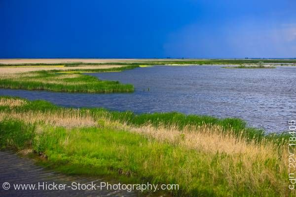 Stock photo of Hammock Marsh landscape Stonewall Manitoba Canada