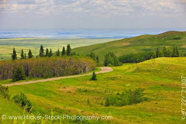 Stock photo of Landscape Viewpoint Cypress Hills Interprovincial Park