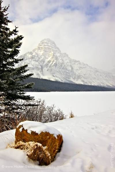 Stock photo of Winter Landscape Mount Chephren Waterfowl Lake Banff National Park Alberta Canada