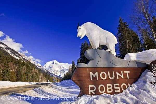 Stock photo of Mountain Goat Statue Mount Robson Provincial Park Yellowhead Highway British Columbia Canada