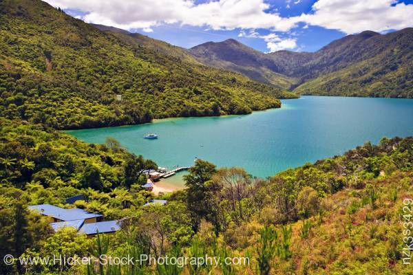 Stock photo of Punga Cove Resort Endeavour Inlet Queen Charlotte Sound Marlborough South Island New Zealand