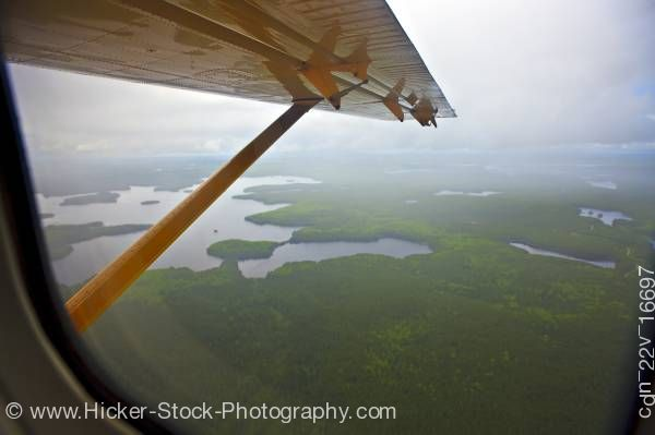 Stock photo of Northern Ontario Aerial View Lakes Forest Islands De Havilland DHC-3 Otter Aircraft Red Lake Ontario