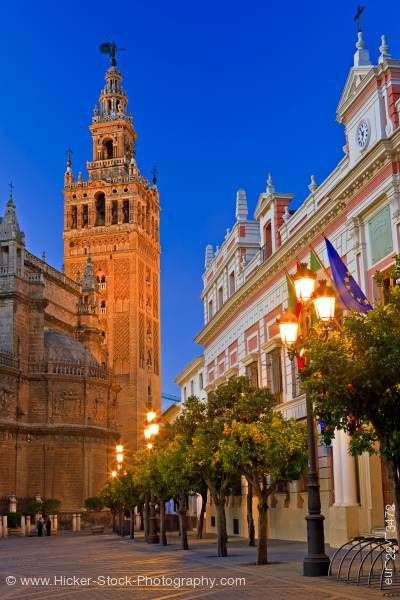 Stock photo of Seville Cathedral La Girlda Plaza del Triunfo Santa Cruz District City of Sevilla