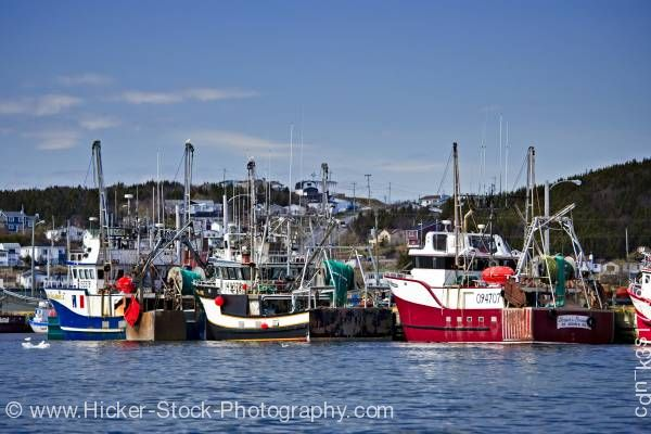 Stock photo of Shrimp fishing boats St Anthony Harbour Viking Trail Newfoundland Canada