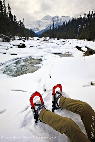 Stock photo of Snowshoes Person Mistaya River Bank Mount Sarbach Mistaya Canyon Banff National Park Alberta Canada