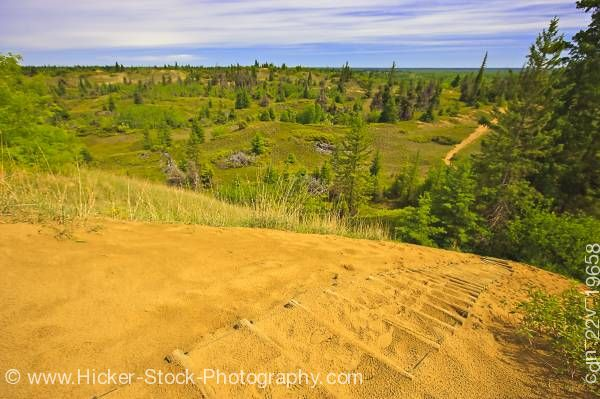 Stock photo of Overview Spirit Sands Trail atop a sand dune in Spruce Woods Provincial Park Manitoba Canada