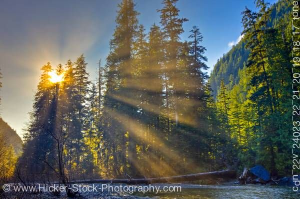 Stock photo of Sunlight Streaming Through Forest Near Virgin Falls Vancouver Island British Columbia Canada