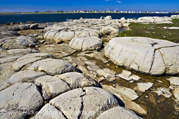 Stock photo of Thrombolites Flower's Cove Hwy 430 Newfoundland Canada
