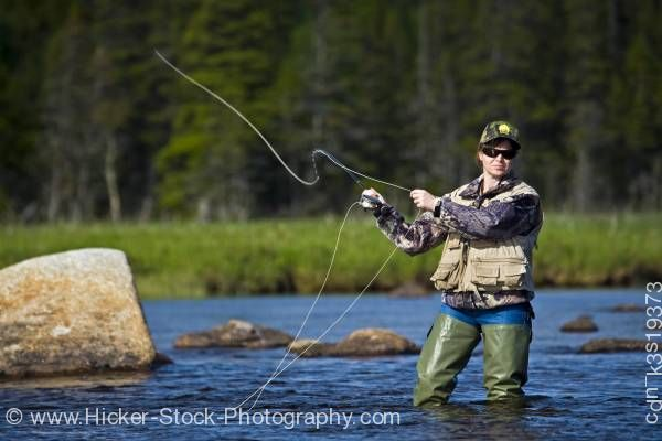 Stock photo of Woman fly fishing Salmon River Main Brook Viking Trail Newfoundland Canada