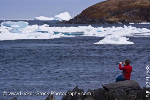 Stock photo of Woman iceberg watching shore Newfoundland
